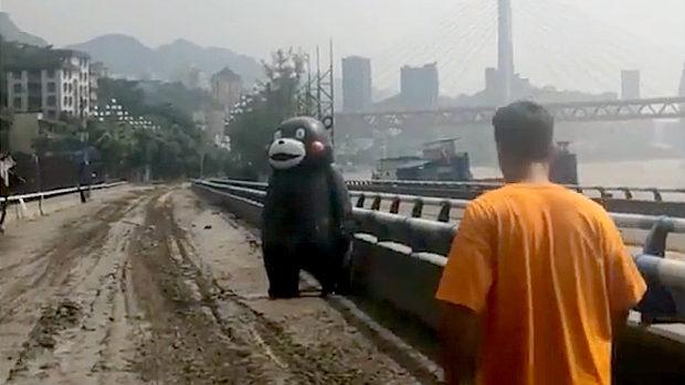中国、洪水で流され漂流した重慶のくまモン、救助され元の場所に帰還