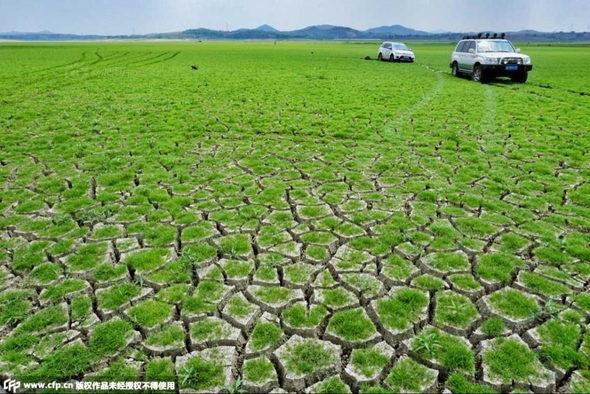 【中国】山東省、干ばつでダムが枯れて底に亀裂!2
