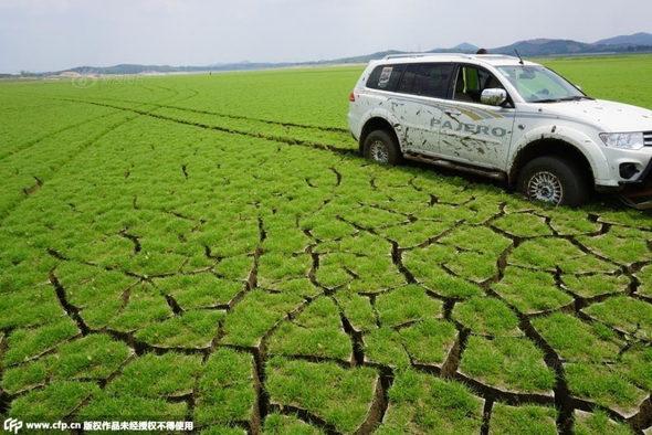 【中国】山東省、干ばつでダムが枯れて底に亀裂!1