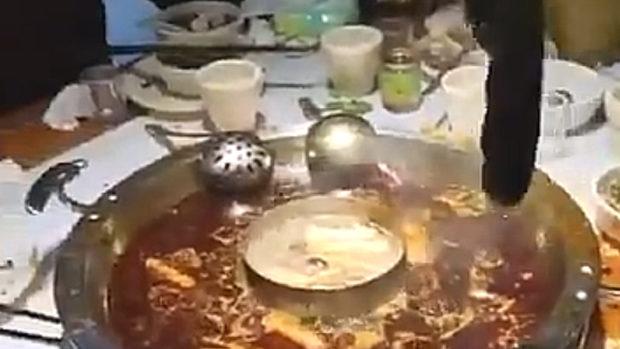 中国、今日の火鍋は出汁が効いている!と思ったら鍋からコレが出てきた