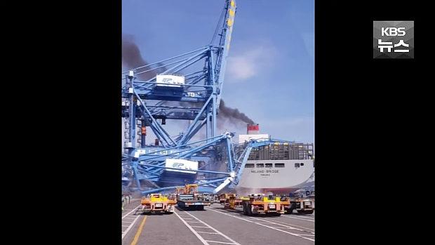 韓国、釜山港で大型コンテナ船が港湾クレーンに衝突!クレーンが崩壊