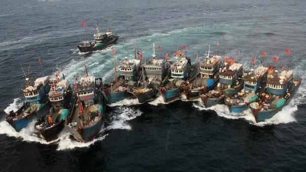 中国漁船が世界中でやらかす魚の乱獲