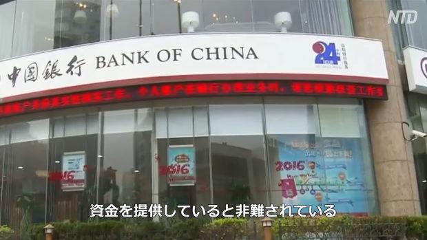 中国の銀行が世界規模で「森林破壊」に関与!