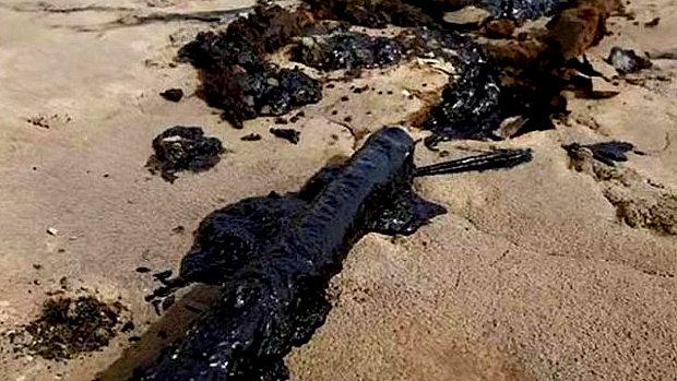 【中国】内モンゴルの砂漠に5万トンのドロドロの黒い汚染物質!製紙工場の廃棄物-2