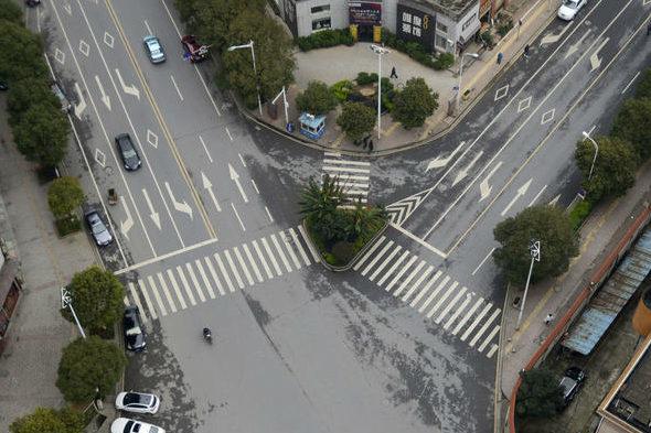 【中国】まさかの横断歩道の中を緑化!2
