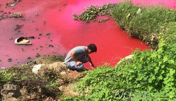【中国】朝起きて見たら小川が「血の川」に!2