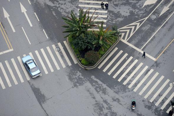 【中国】まさかの横断歩道の中を緑化!1
