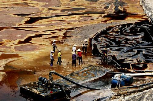 中国、重金属による土壌汚染が深刻 汚染水に接触した魚が1分で死亡 2