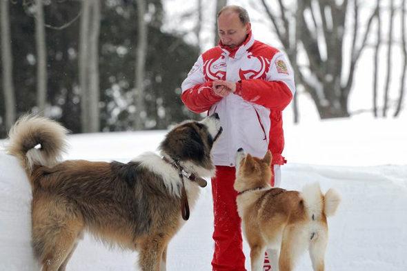 プーチン大統領と秋田犬「ゆめ」 5