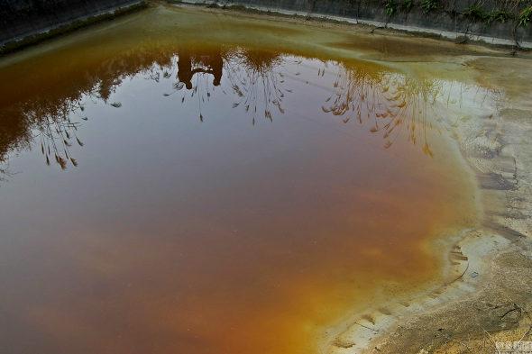 【中国】桃源郷、工場汚染で果実は奇形、「がん村」に!4