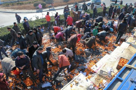 中国、トラック横転、みかん35トンが散乱!住民略奪 &gt&gt&gtT