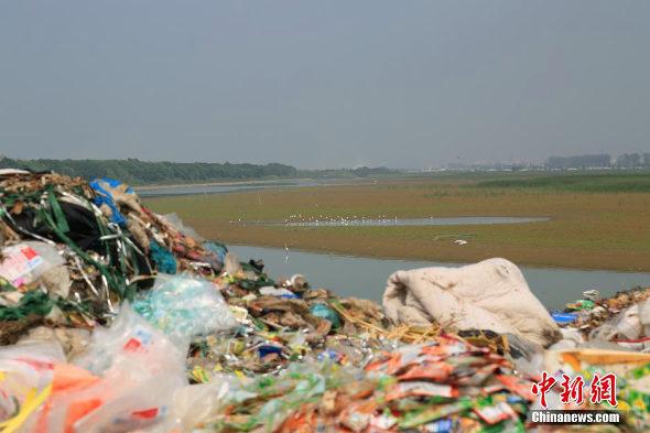 【中国】杭州湾の汚染ゴミの様子1