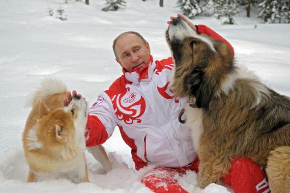 プーチン大統領と秋田犬「ゆめ」 1