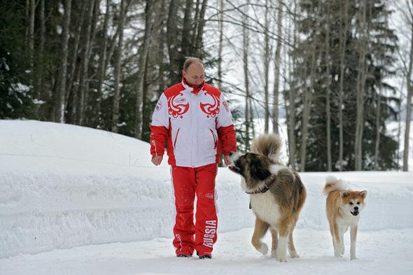 プーチン大統領と秋田犬「ゆめ」 6