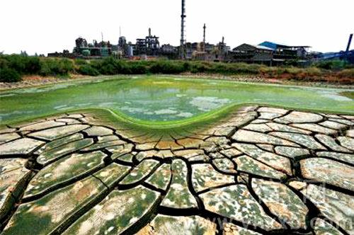 [海外] 中国、重金属による土壌汚染がヤバい 汚染水に接触した魚が1分で死亡!
