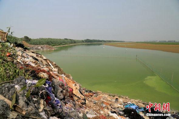 【中国】杭州湾の汚染ゴミの様子2