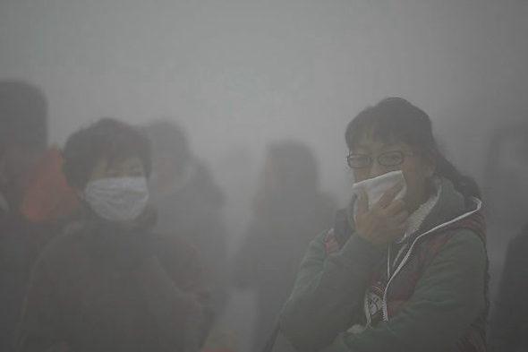 中国人の64%が自身を「環境保護主義者」と認識=調査8