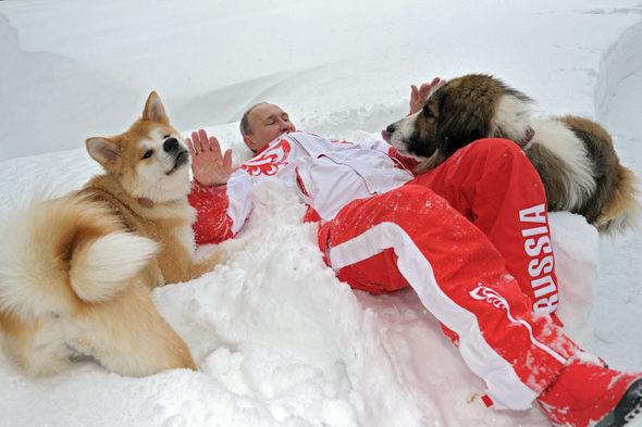 プーチン大統領と秋田犬「ゆめ」 2
