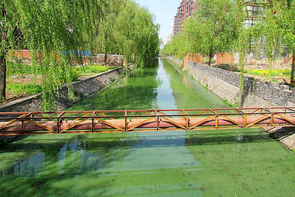 【中国】水質汚染事故、毎年1700件以上発生3