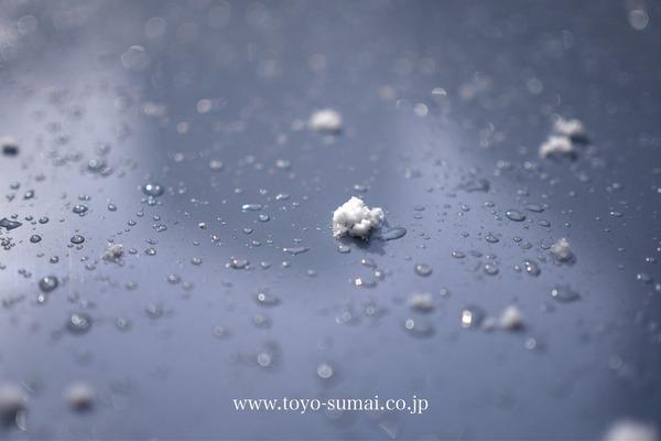 さいたまの風景 雪