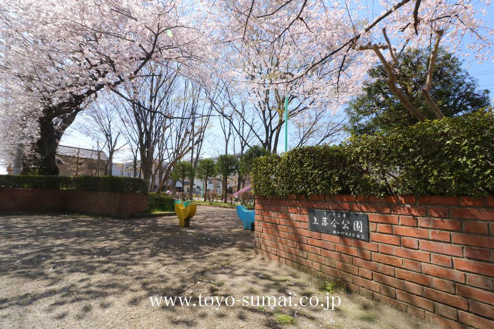 さいたま市中央区 上落合公園の桜が見頃をむかえました ...