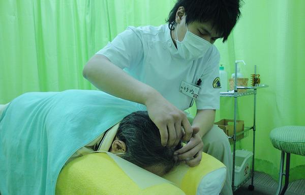 0423わんステップ臨床実習:施術体験