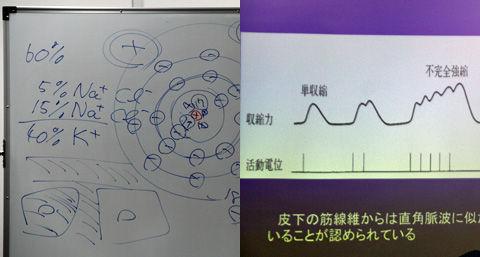 h24-1-murakami