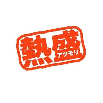 ikko_housuteatumori002[1]