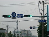 250px-Signal_korea_4green_and_left_Turn2