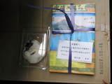 2010年02月27日_P2270383