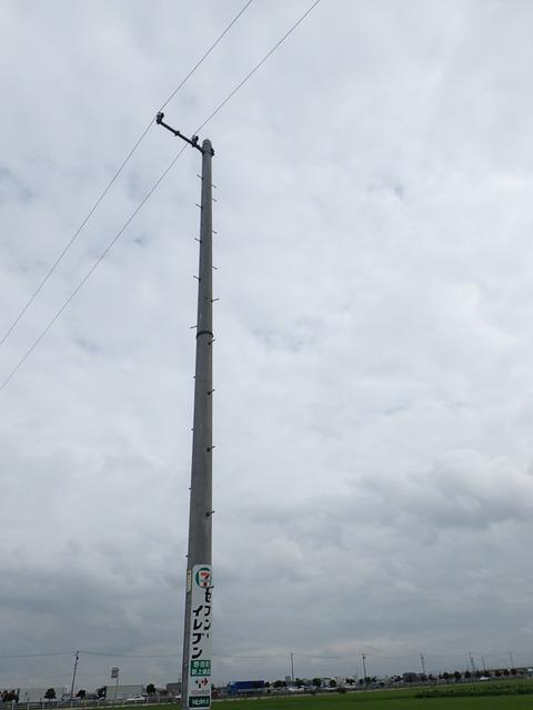 P8030111