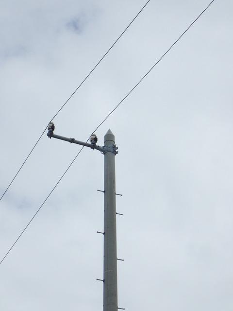 P8030112