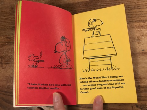 Vintage Peanuts Snoopy Picture Book (16)