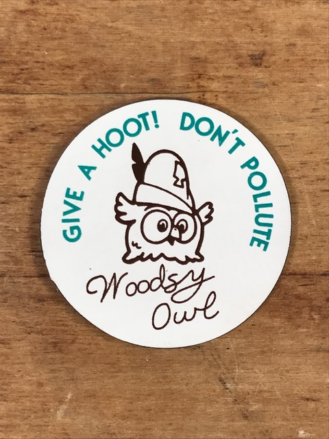 """Vintage Woodsy Owl """"Give A Hoot! Don't Pollute"""" Magnet (1)"""