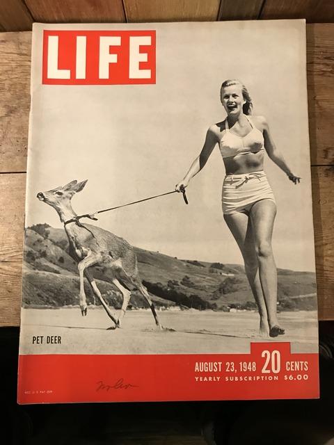 vintage 40's life magazine (1)