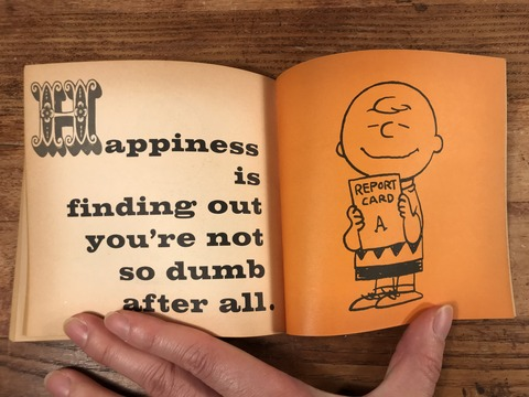 Vintage Peanuts Snoopy Picture Book (44)