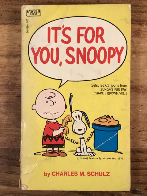 "Vintage Peanuts Snoopy ""It's For You, Snoopy"" Comic Book (1)"