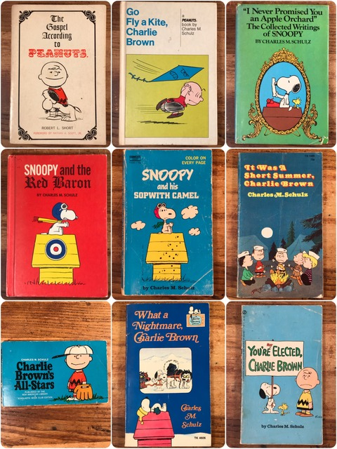 Vintage Peanuts Snoopy Picture &  Comic Book