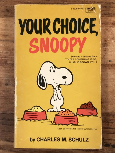 "Vintage Peanuts Snoopy ""Your Choice, Snoopy"" Comic Book (1)"