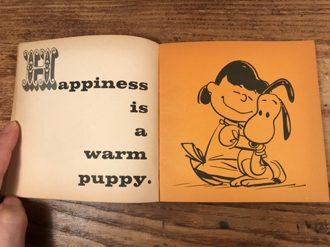 Vintage Peanuts Snoopy Picture Book (40)