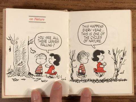Vintage Hallmark Peanuts Snoopy Mini Picture Book (13)