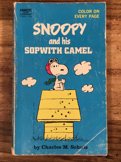 Vintage Peanuts Snoopy Picture Book (1)