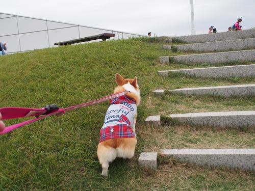 階段も頑張って登りましたね\(◎o◎)/!