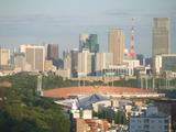 国立競技場. 2020年東京オリンピックに向け工事中