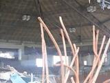 天井まで数十センチと迫る巨大津波が