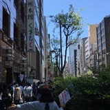 銀座熊本館くまもと (5/4/2016)