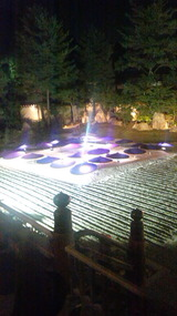 高台寺のライトアップ (2014,11/1)