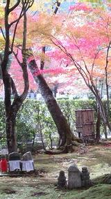 化野の念仏寺