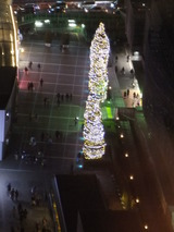 illumination trees in the Odakyu Southern Terrace viewed from the 19th floor of the Hotel.
