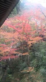 「永観堂」の別名が「禅林寺」